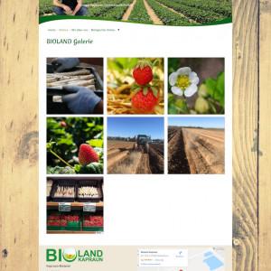 aktuell_detail_Bioland_Kapraun_thumb.300x300-crop.jpg